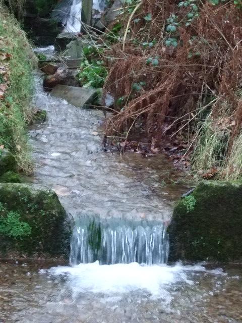 Birley Spa