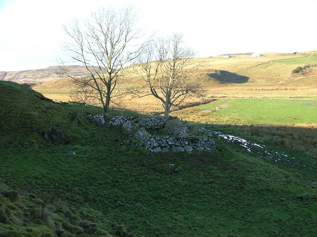 Ruin and Trees in Glen Uig.