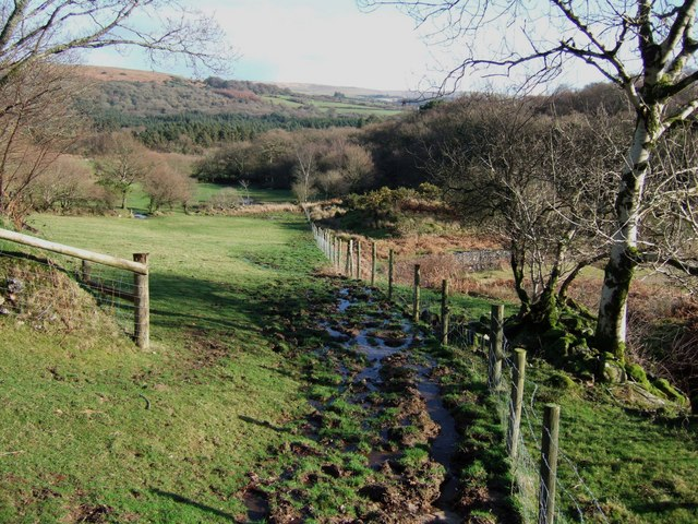 Footpath east of Broomage Wood