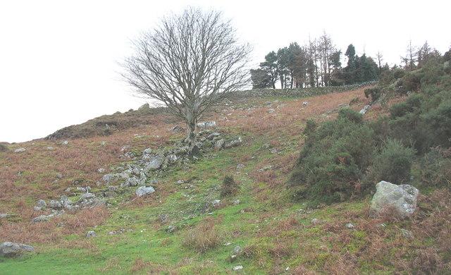 A Clegyr hillside