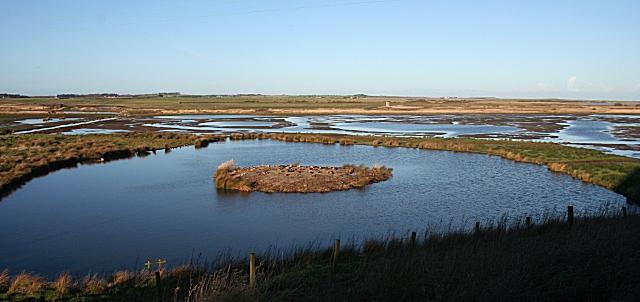 Starnafin Pool in January