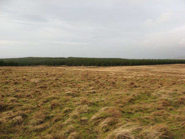 Glenquicken Moor