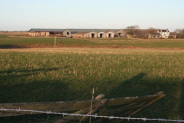 Savoch Farm