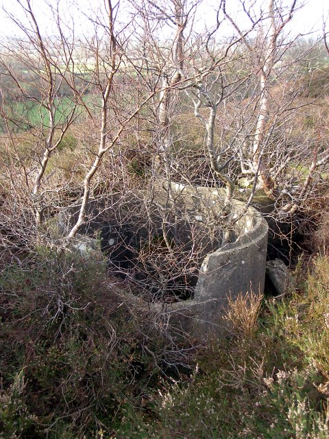 Concrete remains on Ibsley Common, New Forest