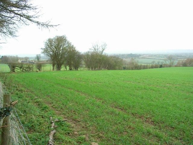 Salter's Well Farm