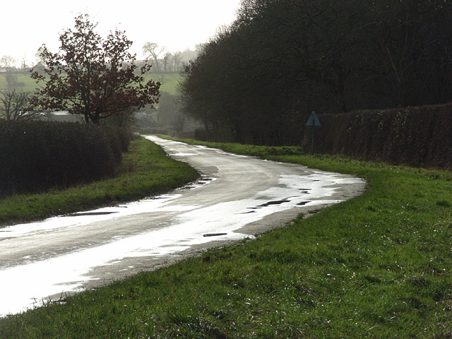 Road near Kingston Lisle