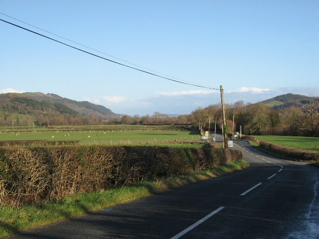 The A495