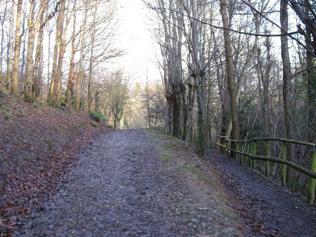 Entering Goatfield Arboretum