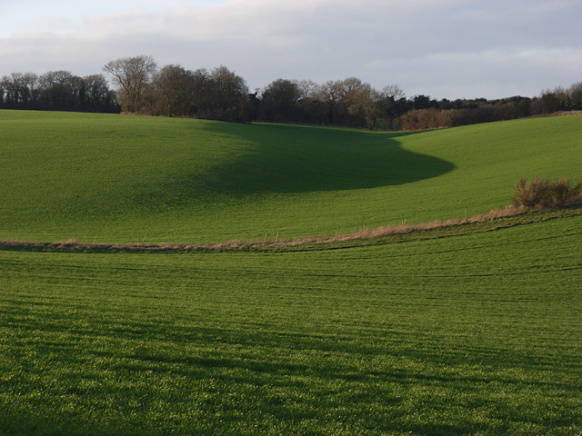Arable farmland on the Lambourn Downs