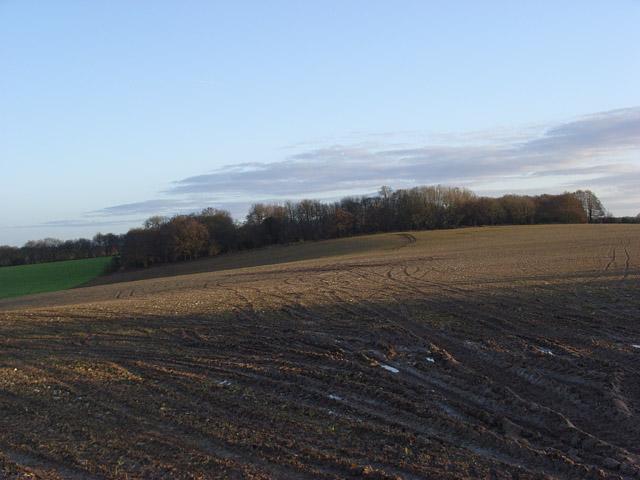 Farmland above Upper Lambourn