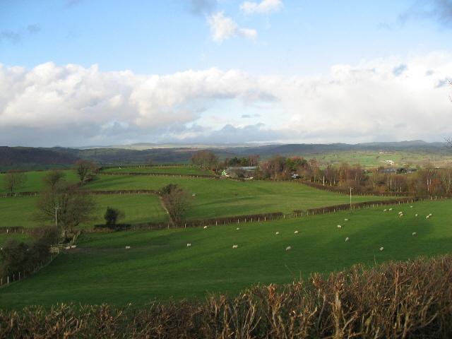 Farmland Surrounding Maes-y-glydfa