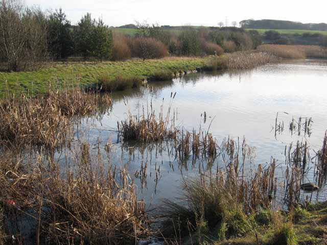 Pond at Hetton Lyons Country Park
