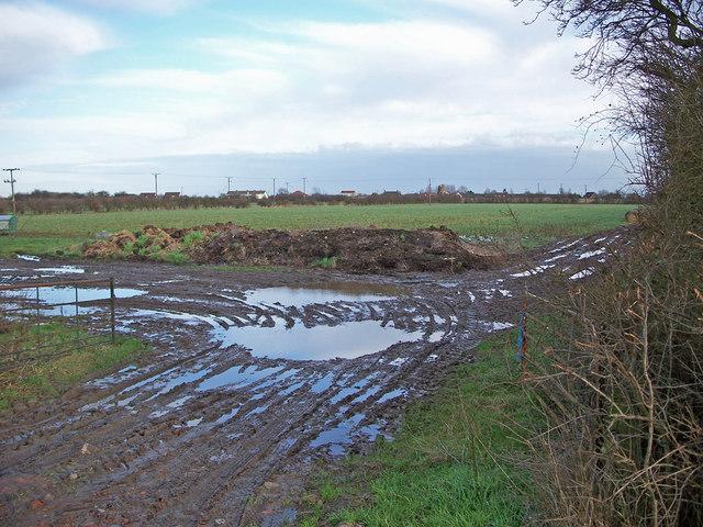 Off West Marsh Lane