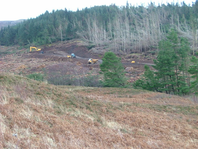 Clear Felling in Hinnisdal Forest