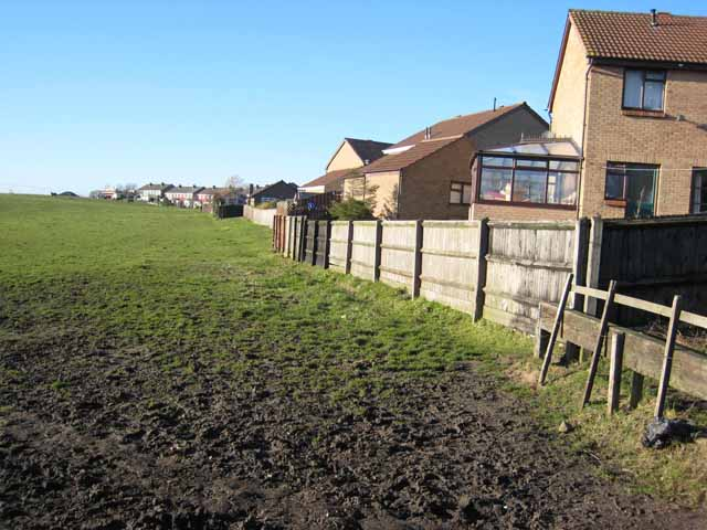 Field adjoining the Winds Lonnen Estate, Murton