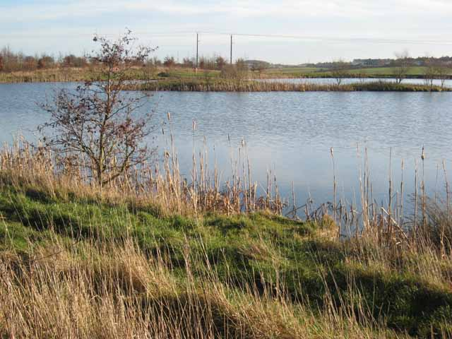 Pond to the north of Murton