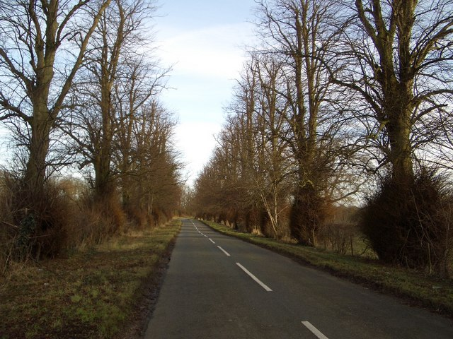 Tree Avenue on Dungee to Hinwick Road
