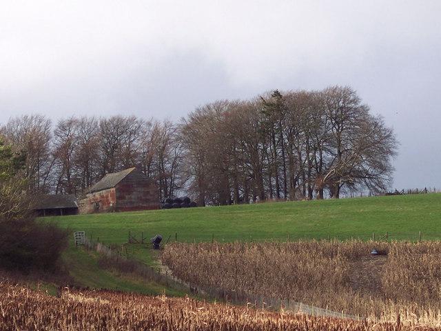 Field Barn on Woodminton Down