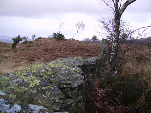 Dry Stone Wall, Rusland Heights