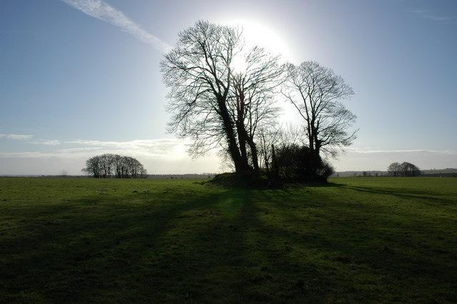 Long Barrow near Upper Kilcott