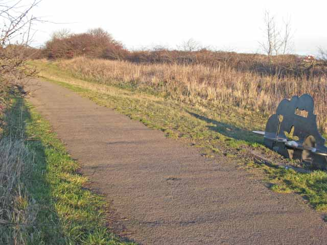 National Cycle Network route 1 near Seaham Grange