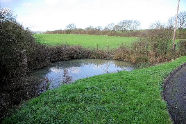 Pond by Drive to Broyle Park Farm