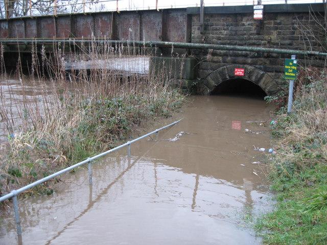 Flooded Pedestrian Subway