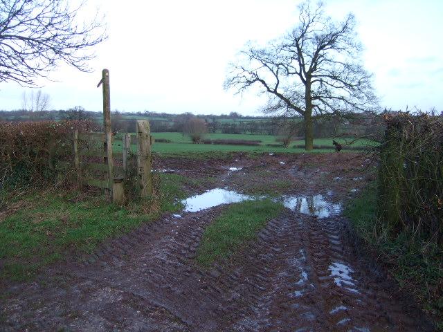 Footpath at Trusley