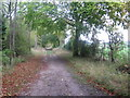 TL1330 : Icknield Way near Tingley Wood by Alan Kent
