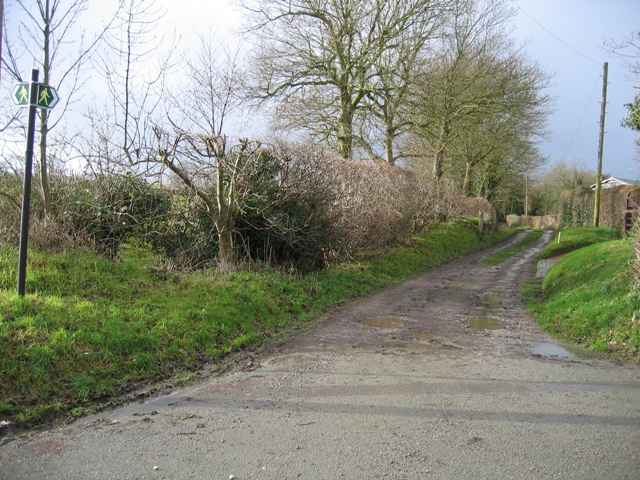 Lane and Footpath to Leeswood-Green Farm