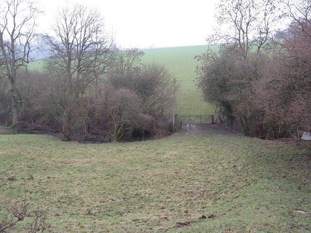 Brook near Lower Lye.