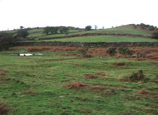 Towards Crownhill Tor