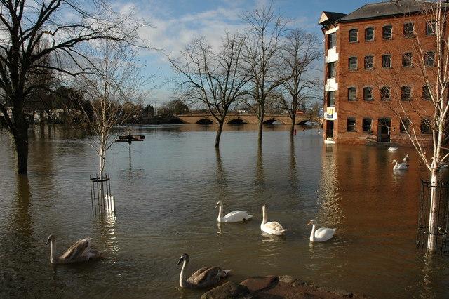 Flooded riverside, Worcester