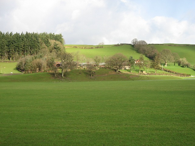 Pasture, Farm And Wood