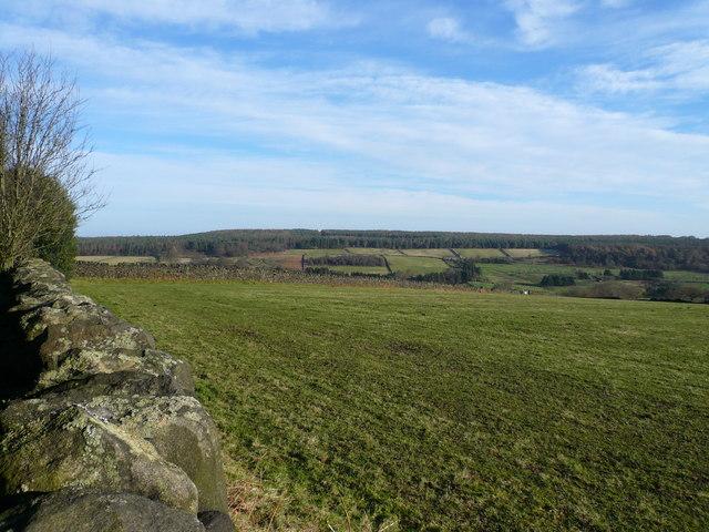 Bottom Moor and Cuckoostone - Viewed from Farley Moor