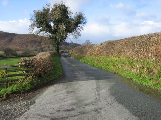 The Road To Berth-Fawr
