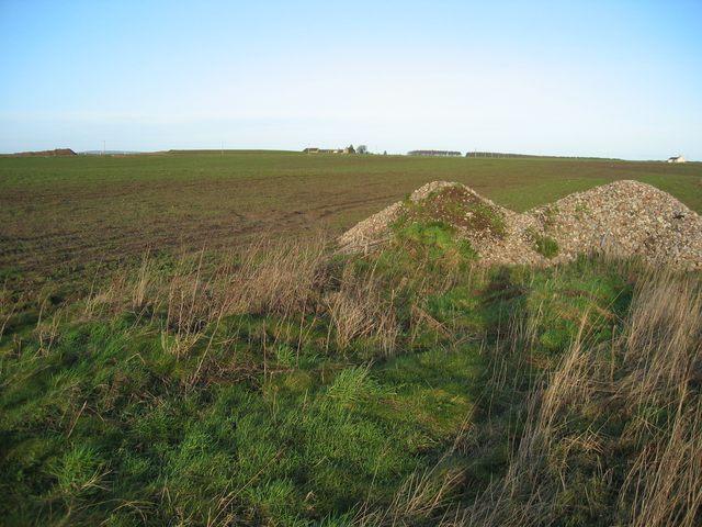 Field at Fisherton