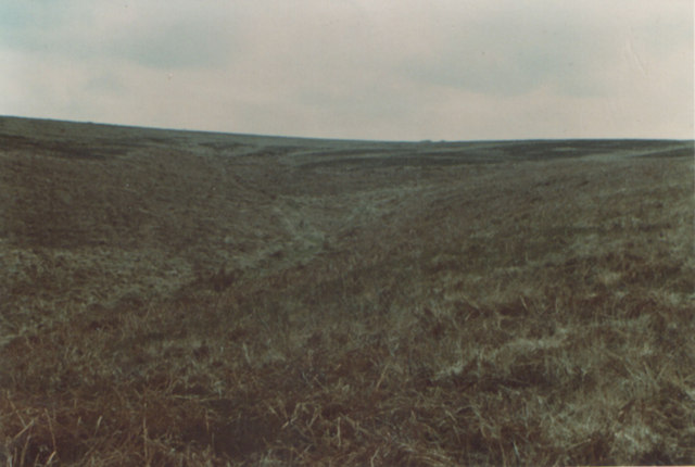 Moorland winter