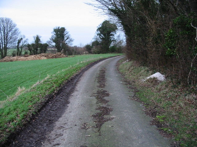 Looking NE along a gated road bordering Eastling Wood.