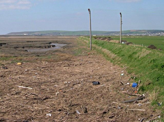 Spring Tide Debris