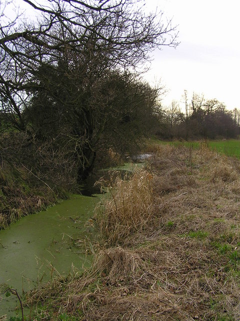 Drainage stream from Logeral pool at Teddeslay Hay