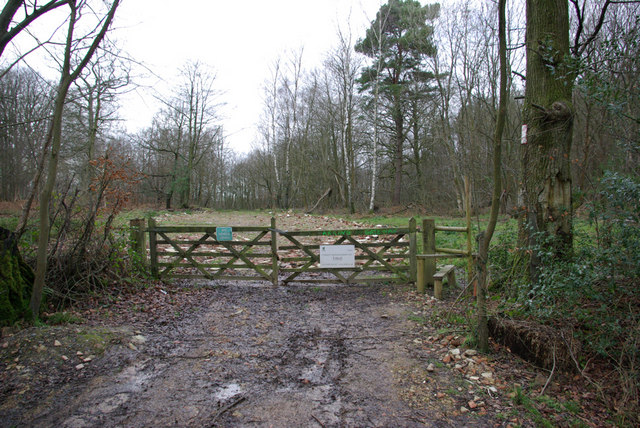 Gateway to 500 Acre Wood