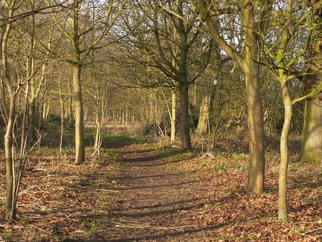 Path on the Thornham Estate
