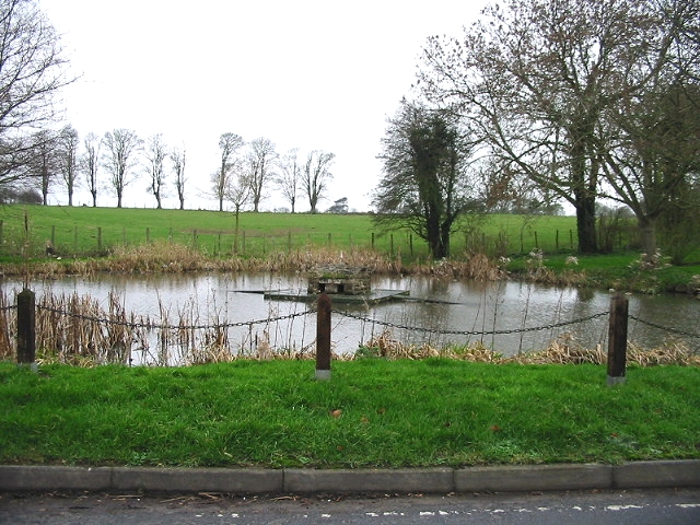 The village pond, Coldred.