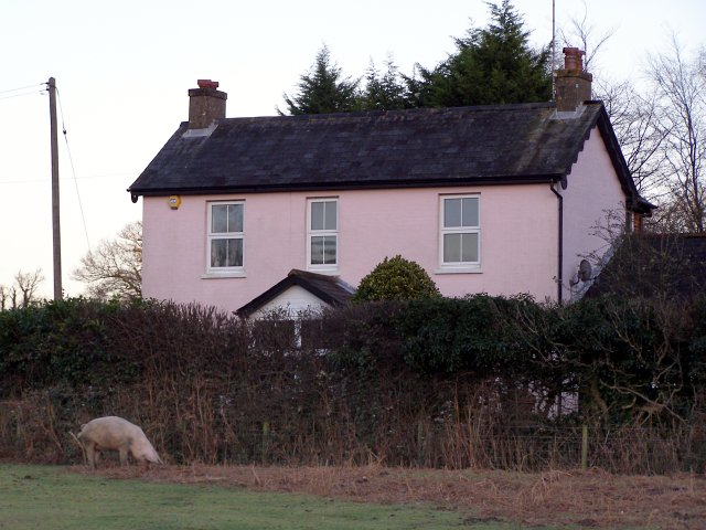 Pink cottage at dusk, Appleslade, New Forest