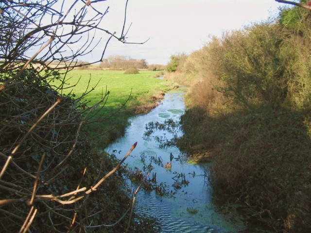 View along stream from Broad Lane.