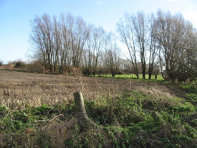 View over farmland at Hacklinge.