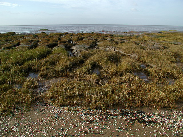 Wyke Bight, Spurn Peninsula
