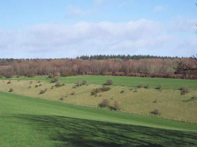 Valley taken from Portfield Road