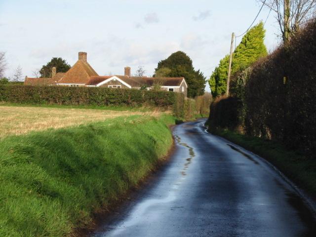 Looking N along lane near Hoaden.